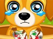 Play Paw Doctor game